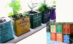 MINI DESIGN: Tea Cans recycle