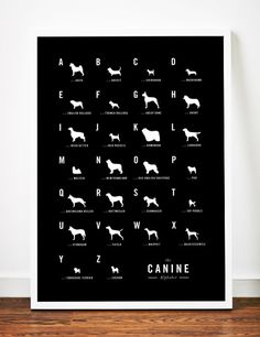 Dog Alphabet Nursery poster art print by WeaversofSouthsea on Etsy, $19.00