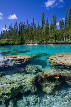 Coral rocks and crystal water, Isle of pine.    La piscine naturelle, île des pins, Nouvelle-calédonie.