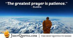 Buddha Quote - 95