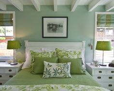 Sage Green Color Pallette Design, Pictures, Remodel, Decor and Ideas - page 4