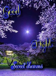 Good Night Qoutes, Good Night Love Messages, Good Night Love Images, Good Night Prayer, Good Night Friends, Good Night Blessings, Good Night Greetings, Good Night Wishes, Good Night Cards