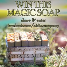 soap giveaway old factory soap company