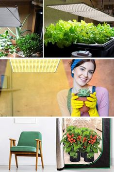 Grow lights can help you start healthy veggie seedlings early in the year. To get the most bang for your buck, you should look for a light that works as hard as you do to make sure your little seeds grow up into big, bushy plants that will produce lots of flowers, and then vegetables. Check out our guide for helpful tips and product reviews. #vegetables #growlight #veggiegardening #gardening #veggies #growingfood Garden Vegetable Recipes, Indoor Vegetable Gardening, Planting Vegetables, Gardening Tips, Veggies, Best Grow Lights, Grow Lights For Plants, Led Grow Light Bulbs, Grow Lamps