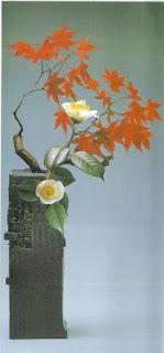 """Florez Nursery: Alstroemeria aurantiaca """"Lily of the Incas"""""""