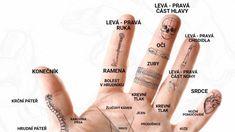 Zázračné body na ruce. Hand Henna, Hand Tattoos, Ted, Akupresurní Body, Health, Fitness, Health Care, Salud