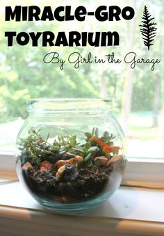 Create your own easy and fun toyrarium with help from Miracle-Gro Moisture Control Potting Mix.  #MiracleGroProject