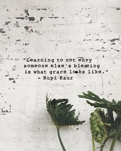 Inspirational Quote - Learning to not envy someone else's blessing is what grace looks like - Rupi Kaur Great Quotes, Quotes To Live By, Me Quotes, Inspirational Quotes, Envy Quotes, Short Quotes, Famous Quotes, Motivational Quotes, The Words