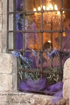 Flowers peaking out from old English window