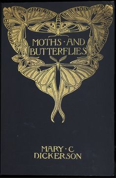 Moths & Butterflies (book cover). Looks like a Margaret Armstrong binding but I can't see her initials. Lovely.