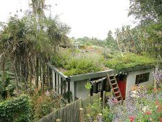 Roof Garden | roof-garden