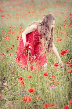 Picking Poppies in The Meadow ~ Spring Song, Flora Und Fauna, Field Of Dreams, Perfect World, Red Poppies, Belle Photo, Bunt, Flower Power, Wild Flowers