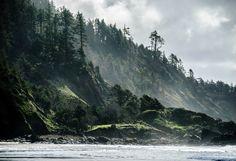 Ecola State Park [Cannon Beach, Oregon]