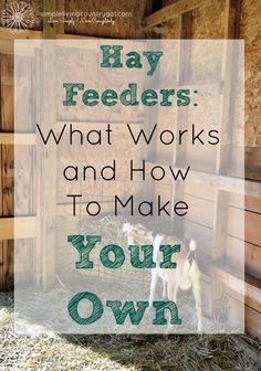 There are a lot of feeder options out there, here is a list of what I have…