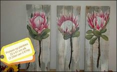 purpleworx Protea Art, Window Seats, Painting Lessons, Succulents, Gardens, Inspirational, Paintings, Oil, Cartoon
