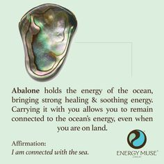 Abalone holds the energy of the ocean, bringing strong healing and soothing energy. Carrying it with you allows you to remain connected to the ocean's energy, even when you are on land. #abalone