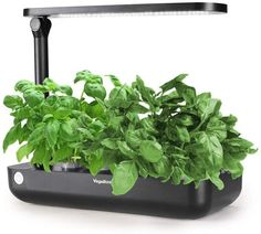 Hydroponics Growing System,Support Indoor Grow,Grow Smart for Plant, Built Your Indoor Garden (Small-Black) Herb Garden Kit, Lawn And Garden, Indoor Garden, Indoor Plants, Outdoor Gardens, Indoor Hydroponics, Hydroponics System, Kitchen Herbs, Plant Needs