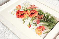Flores de campo, Amapolas
