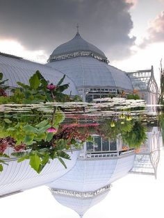 A beautiful reflection. Photo via Laura Connelly. #phipps #phippsconservatory #pittsburgh