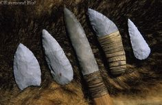 stone points and blades used by Powhatan Indians