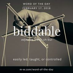 Today's #wordoftheday is 'biddable' . #language #merriamwebster #dictionary