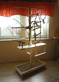 Nymphensittiche - Spielzeug und Einrichtung selber basteln - Vogelbaum - Mario Oltmanns