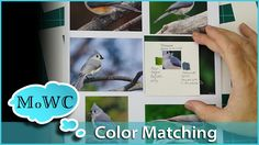 Matching colors accurately from various reference begins with seeing it accurately. I show how a simple viewer for swatch matching can make that process more...
