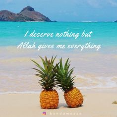 Beach Pictures, Pretty Pictures, Pineapple Wallpaper, Blue Nose Friends, Planner Decorating, Pretty Quotes, Girl House, Uplifting Quotes, Stand Tall