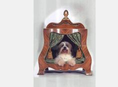 14 Ridiculously Expensive Pet Products | Incredible Things