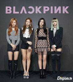 blackpink my favorite new girls group