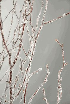 Natural Birch Branches with Glitter & Snow 3-4' tall (5 branches) -- found out the name of those branches from auntie.