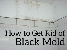 How To Get Rid Of Black Mold The Easy And Way