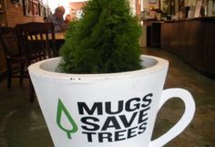 """""""Text for Trees"""" and Arbor Day Foundation Will Plant Up to One Million Trees : TreeHugger Arbor Day Foundation, Arbour Day, Ethiopia, Mugs, Tableware, Plants, Graphic Design, Dinnerware, Tumblers"""