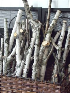 Collection of birch logs @ Number Fifty-Three