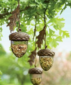 Acorn Birdfeeders---These would look nice in my backyard!