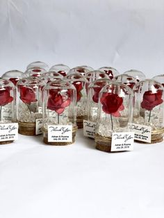 wedding favors for guests wedding favors favors dome custom favors beauty and the beast quinceanera sweet 16 rose dome favors Wedding Favors And Gifts, Wedding Souvenirs For Guests, Creative Wedding Favors, Inexpensive Wedding Favors, Wedding Guest Gifts, Wedding Giveaways For Guests, Beauty And Beast Wedding, Beauty And The Beast Party, Beauty And The Beast Wedding Invitations