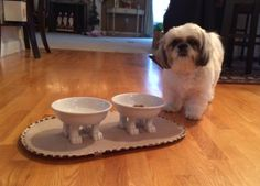 Isn't Lily adorable!? (and those pet bowls are pretty cute, too) :-) thanks Ronda Daly for sharing this fun photo!