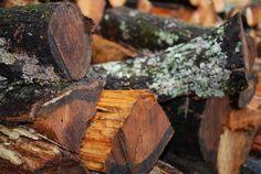 Wood pile after rain showers - Hubba Hubba Smokehouse