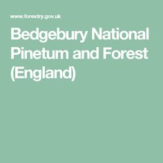 Bedgebury National Pinetum and Forest (England)