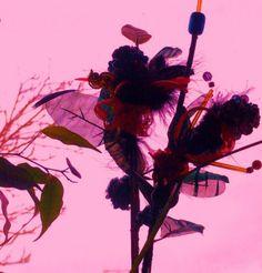 Found Objects  Flowers  Alice Lenkiewicz  (c)