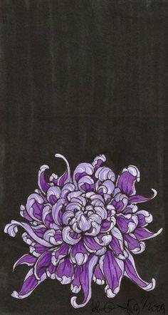 Purple chrysanthemum drawing