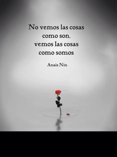 new life Anais Nin, Great Quotes, Me Quotes, Inspirational Quotes, Coaching, More Than Words, Spanish Quotes, Favorite Quotes, Quotations