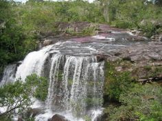 """Cano Cristales, Beautiful River """"Flowing in Paradise"""""""