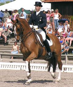 Robert Dover, 6-time Olympian, has been named the new Dressage Technical Advisor and Chef d'Equipe for the United States Dressage Team. 2013.Robert Dover and Kennedy in 2004. ©  Ken Braddick/dressage-news.com