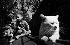 http://photo-gallery.com.ua/images/news/86/Lithuanians_Old_Towns._Kaunas._1977.jpg