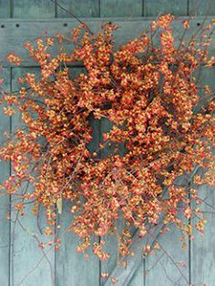 Six in the Suburbs: Fall Wreath Ideas 2012