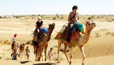 We provide complete best service from Delhi to Rajasthan Tour by Car and Driver.