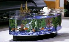 Found it at wayfair aqua coffee table good way to drive for Aquarium cocktail table