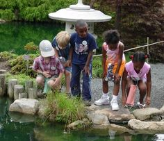 1000 Images About Camp Green Adventures At Lewis Ginter On Pinterest Children Garden