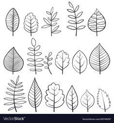 Set of doodle tree leaves vector image Leaf Drawing, Floral Drawing, Doodle Drawings, Easy Drawings, Leaves Doodle, Doodle Trees, Easy Doodle Art, Floral Doodle, Simple Doodles